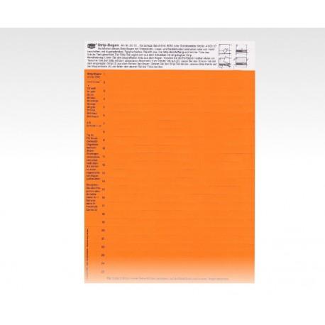 Cartellini descrittivi per cavalierini arancio