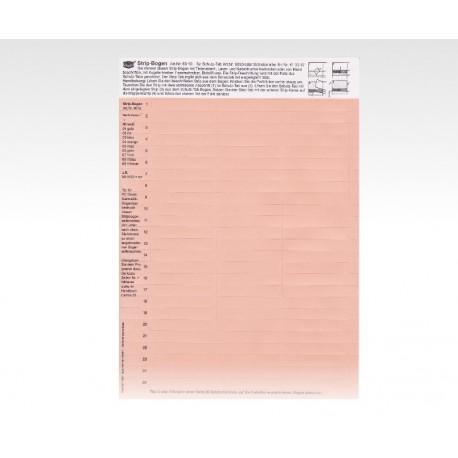 Cartellini descrittivi per cavalierini rosso chiaro