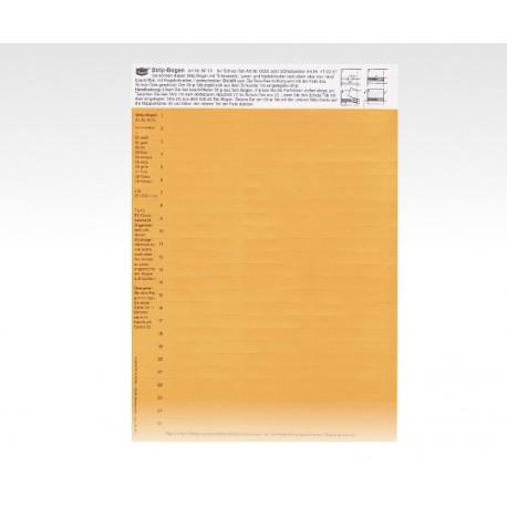 Cartellini descrittivi per cavalierini marron chiaro